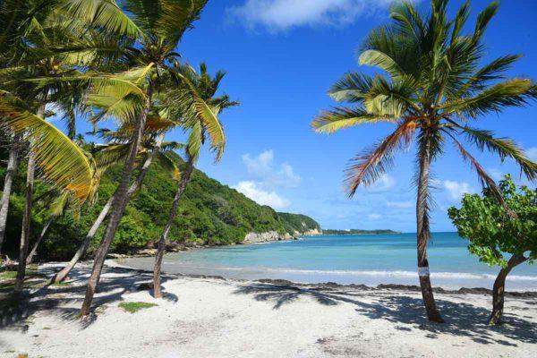 Comment se loger en Guadeloupe ?